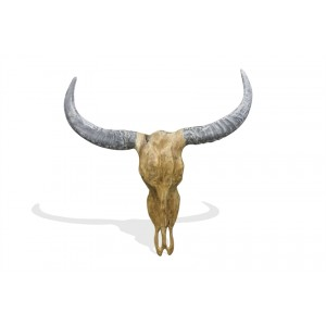 Stylebook Collection Vegan Hunting Trophy - Bull Head with Natural Horns