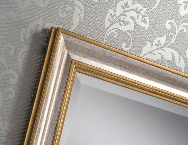 "201 Gold&Silver 41"" X 29"" Bevel (104cm X 74cm) Mirror"